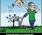 Samoubojstvo na crnogorski način