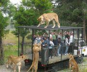 Lavovski Zoo